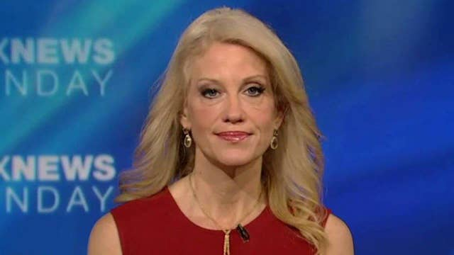 Kellyanne Conway on transitioning Trump to the presidency