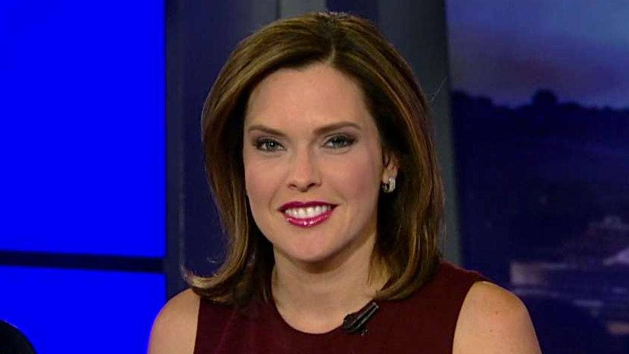 Schlapp: Transition process is 'a bit chaotic' | Fox News