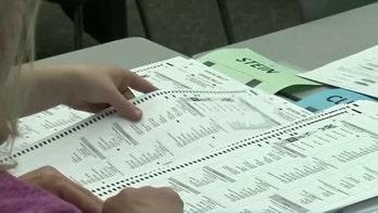 Michigan judge calls off recount effort