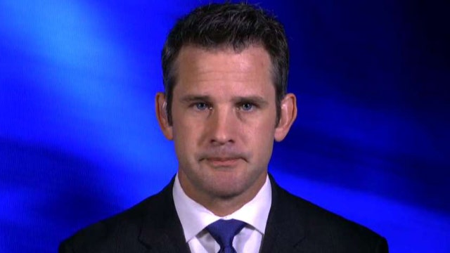 Kinzinger: Russia tried to undermine faith in Constitution