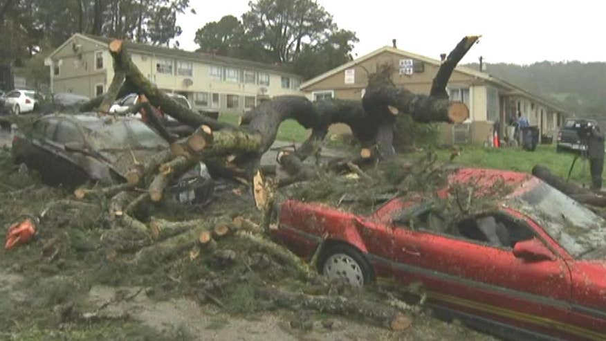 Crews dismantle fallen trees in San Francisco