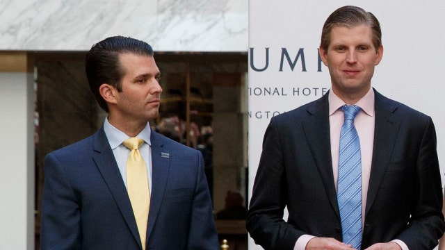 Trump to give sons complete control of business empire