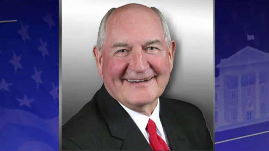 Sonny Perdue to be Trump's agriculture secretary pick
