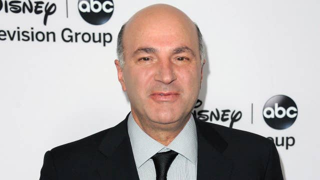 Mr. Wonderful is running for office
