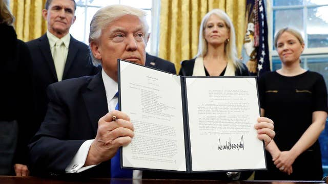 Image result for trump's executive order on immigration