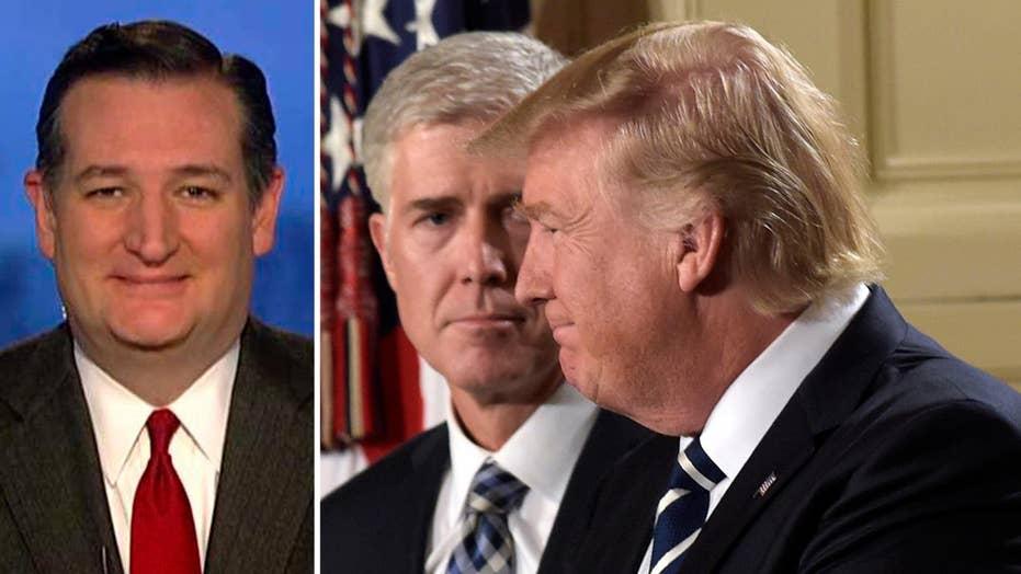 Ted Cruz talks frustration over Democrats in Trump 'denial'