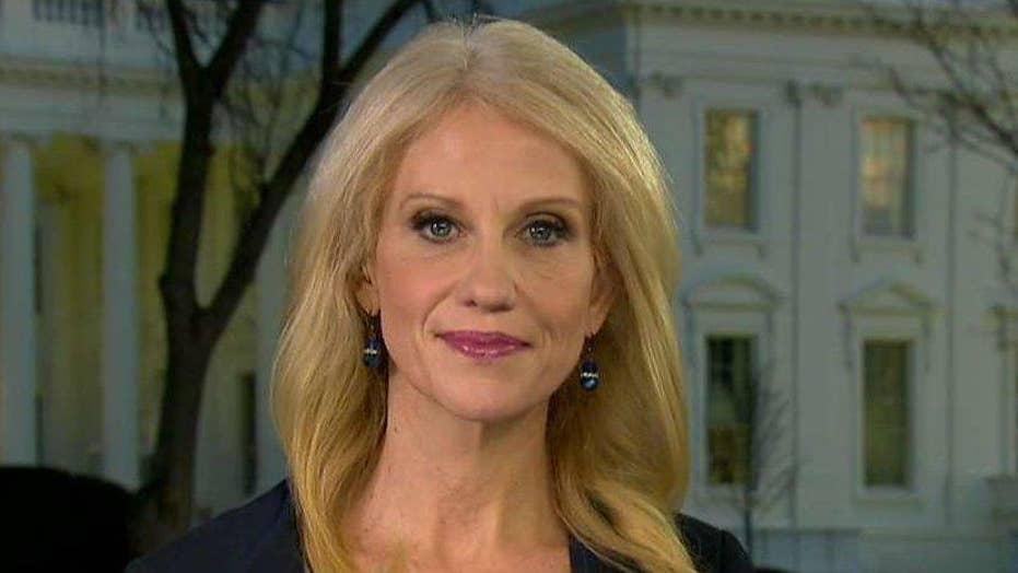 Kellyanne Conway: President is showing progress, solutions