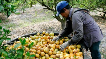 State Department to waive interviews for foreign farmworker visas in response to coronavirus