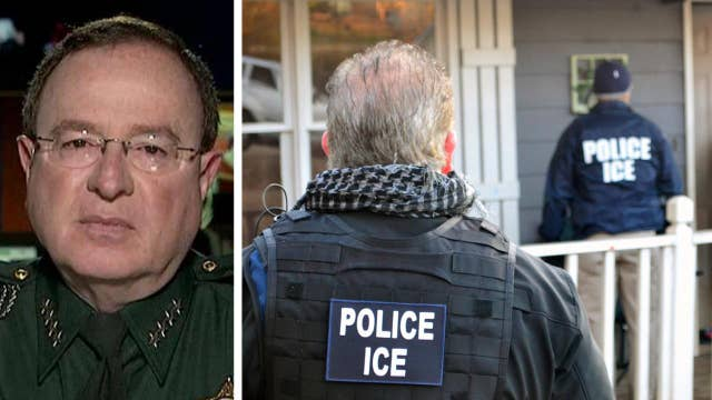 Florida sheriff: Illegal criminals are preying on our people