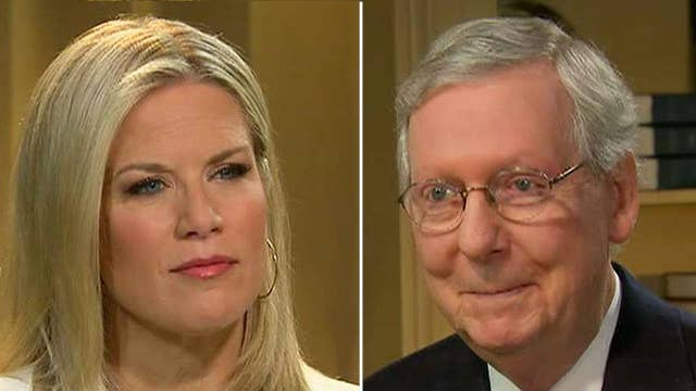 Sen. McConnell: Protests are as American as apple pie