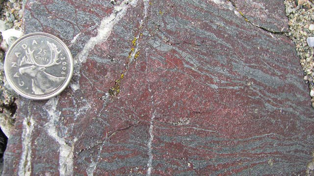 Scientists claim to discover oldest fossils on Earth