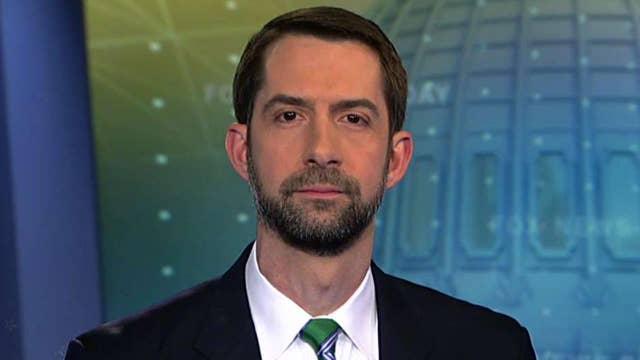 Cotton on Senate's Russia investigation, wiretapping claims