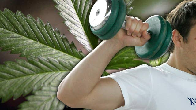 World's first ever weed gym opening in San Francisco