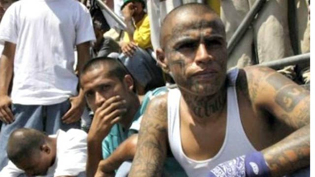 MS-13 gang causing violence across the nation