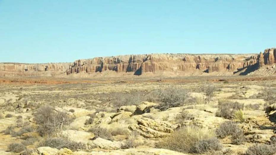 New executive order could open public lands to industries