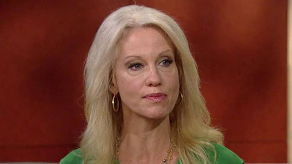 Kellyanne Conway calls out mainstream media 'enablers'