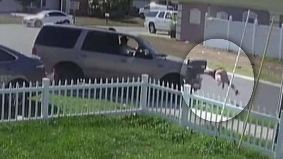 Hit-and-run driver slams into teen in horrifying accident