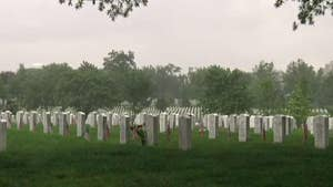 Flower on Every Grave campaign asks Americans to help honor service members