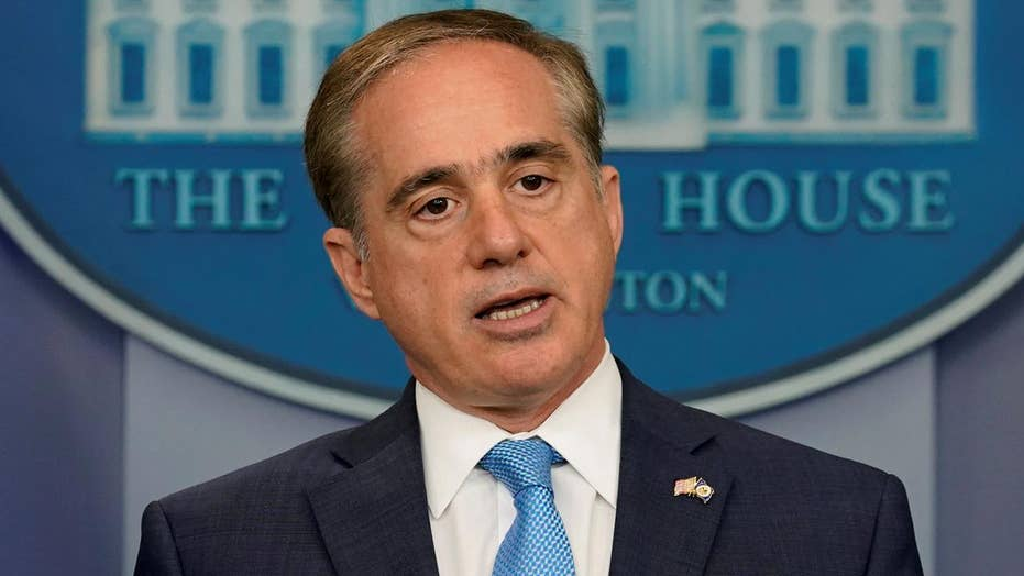 Shulkin: Now is the time to address 'chronic' VA problems