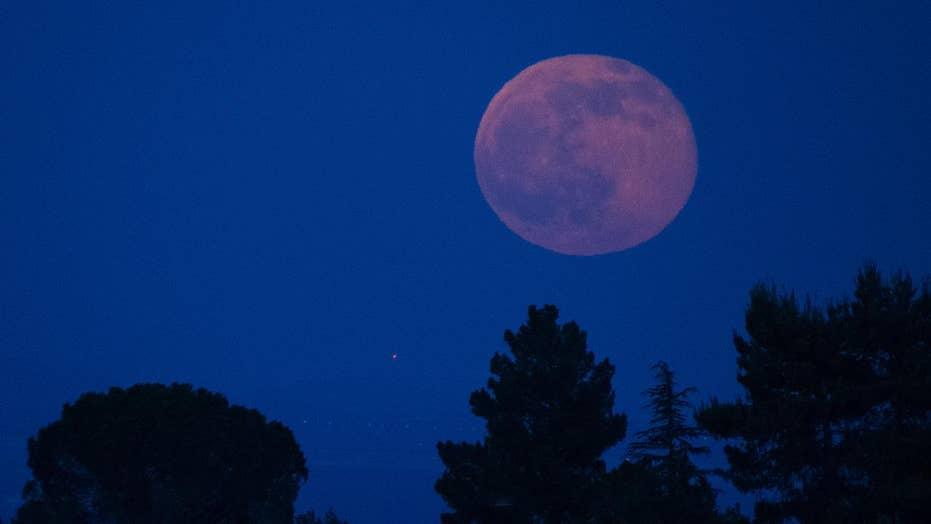 'Strawberry Moon': June's sweet celestial event