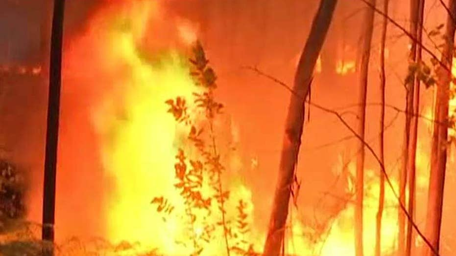 Death toll rises in Portugal forest fire