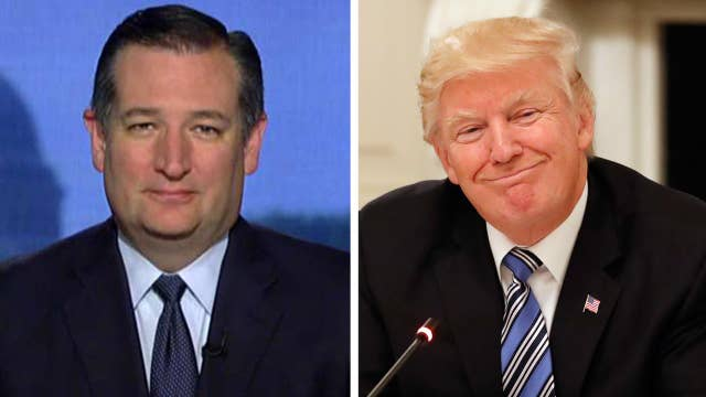 Sen. Cruz: Trump WH has done very well on policy, substance