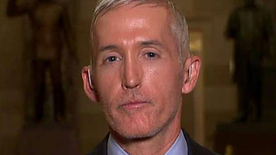 Gowdy: Media has hyperfocus on collusion