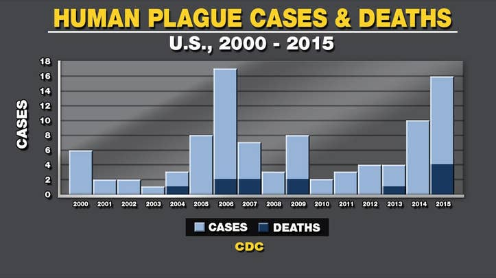 Two new cases of the plague have been diagnosed in New Mexico. These new cases make three in the month of June.