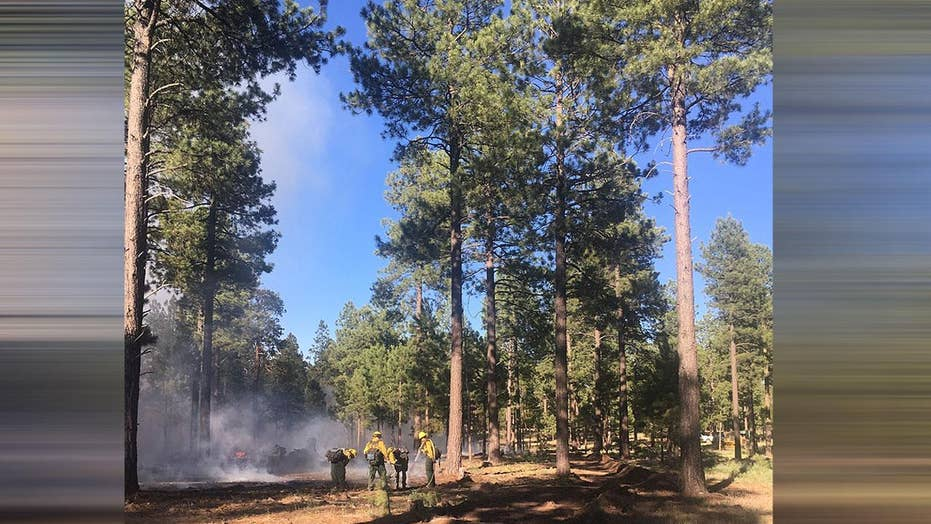 Drone interferes with Arizona wildfire response