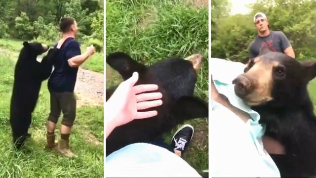 Don't try this at home: Campers chill with curious bear cub