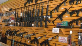 Collection included semi-automatic rifles, shotguns, and pistols