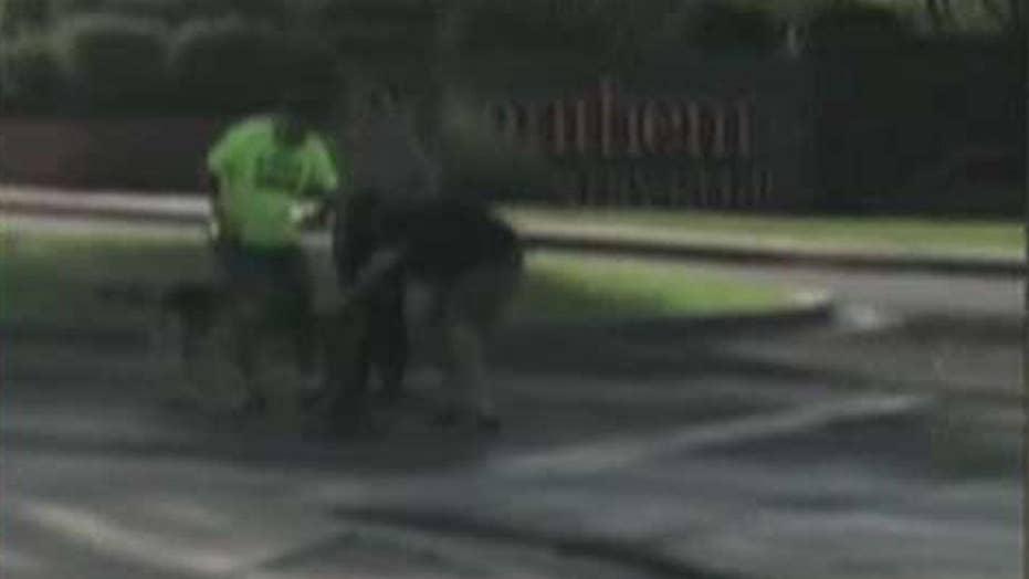 Hero bystander saves dog from bobcat attack