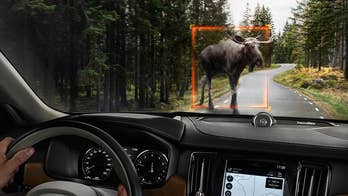 Smart & Safe Tech: Car manufacturers like Volvo are using radar sensors around the car to protect drivers from blind spots, provide smarter parking, and avoiding large animals