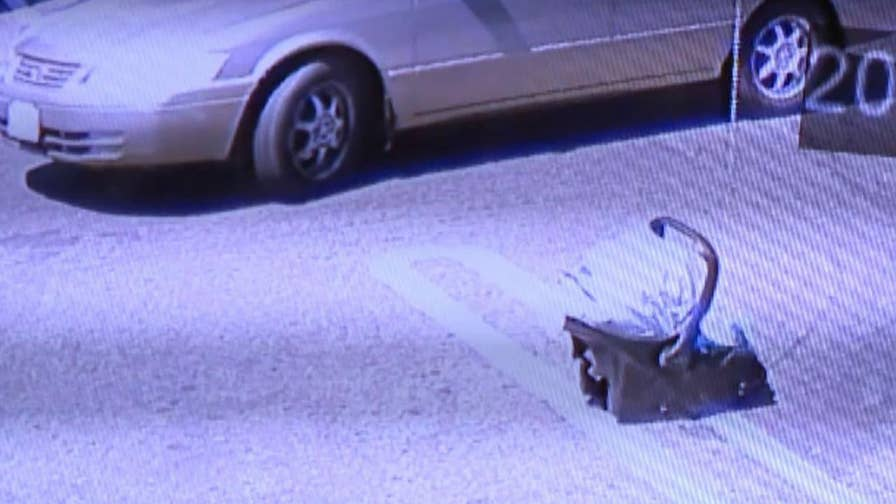 Surveillance video shows father driving away