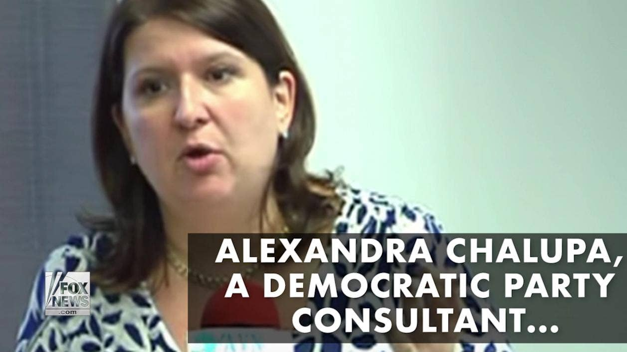 Image result for russian collusion alexandra chalupa