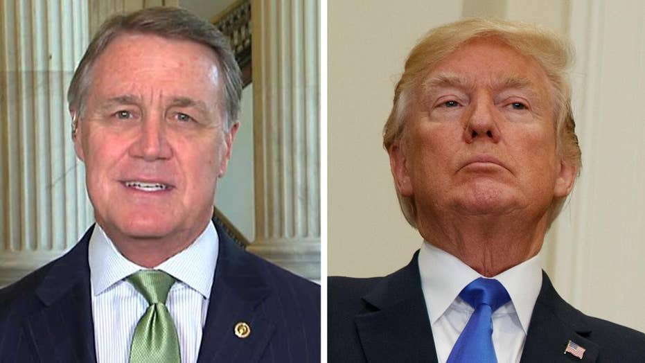 Sen. Perdue: Immigration bill is pro-worker and pro-growth