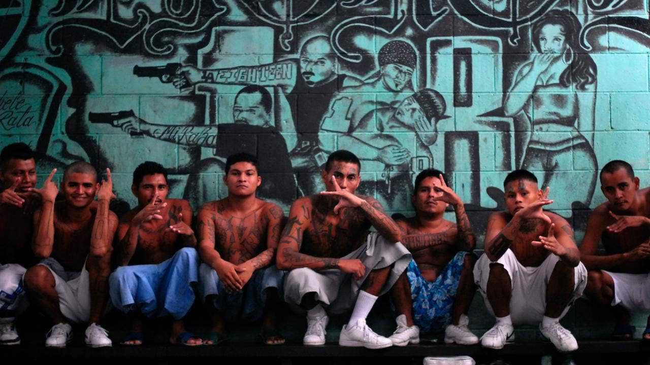Asian and latino gang rivalry