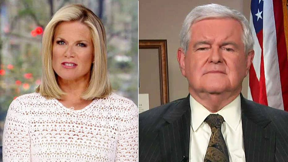 Newt Gingrich: We have a two-sided violence problem