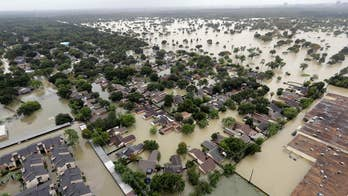 Professor suggests Harvey is karma for supporting for Trump