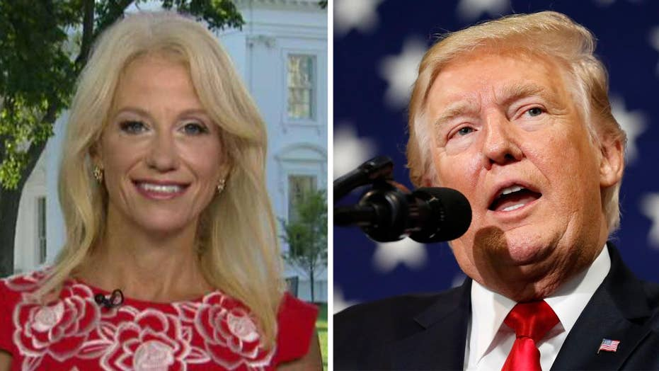 Kellyanne Conway: Americans want tax relief and reform