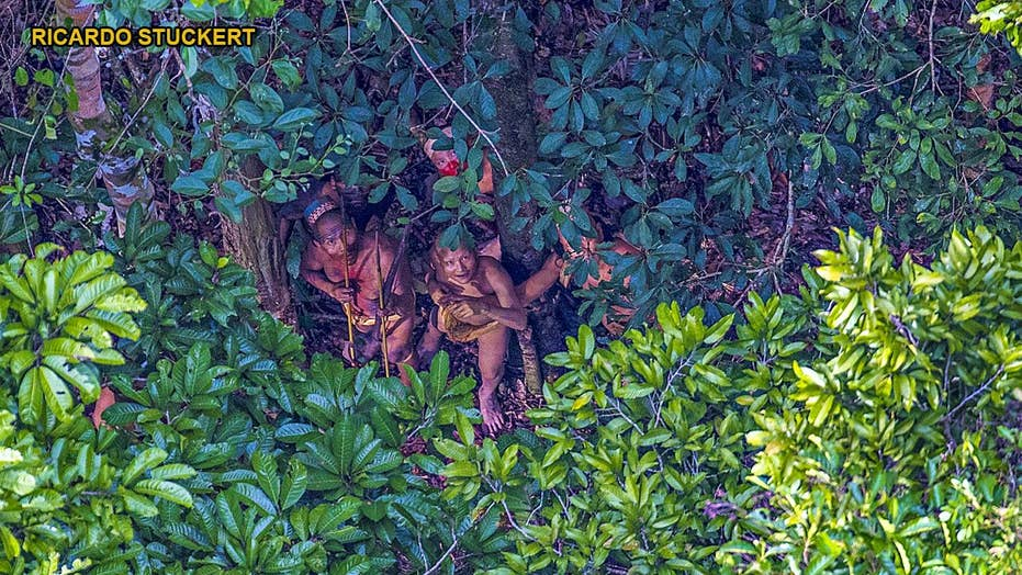 Amazon massacre? Members of uncontacted tribe killed by miners