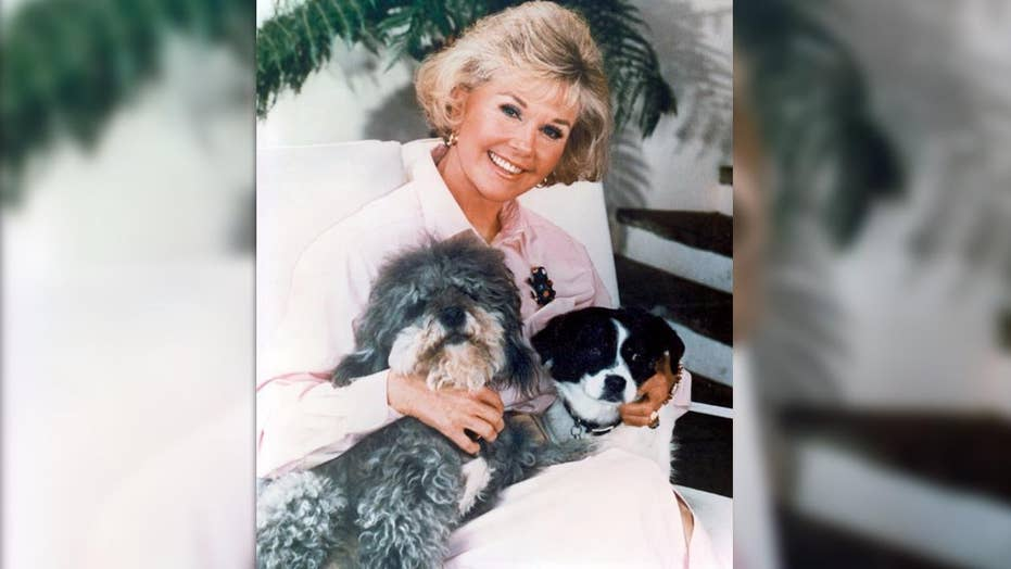 How Doris Day's life was changed by animals