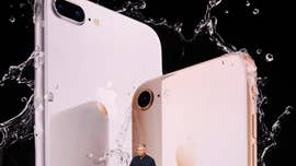Apple shares fells 2.8 percent in early Thursday trading after reports out of Taiwan that the tech giant has slashed orders for the iPhone 8 and 8 Plus by nearly 50 percent for the rest of the year.