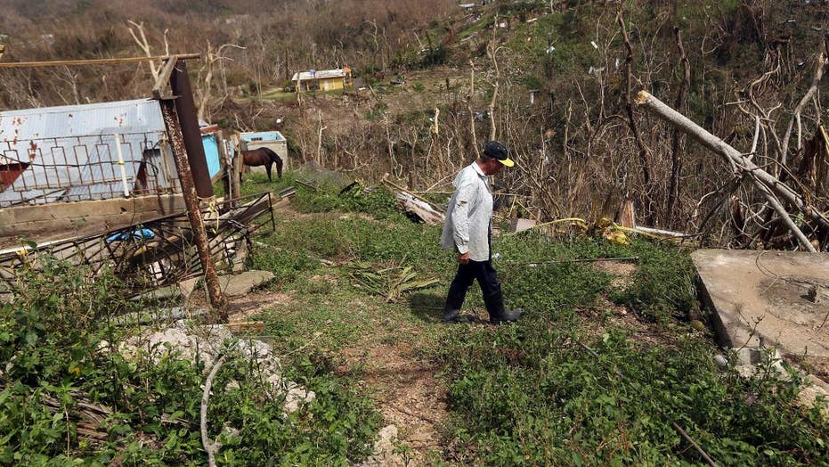 Hurricane relief in Puerto Rico a do-it-yourself affair?