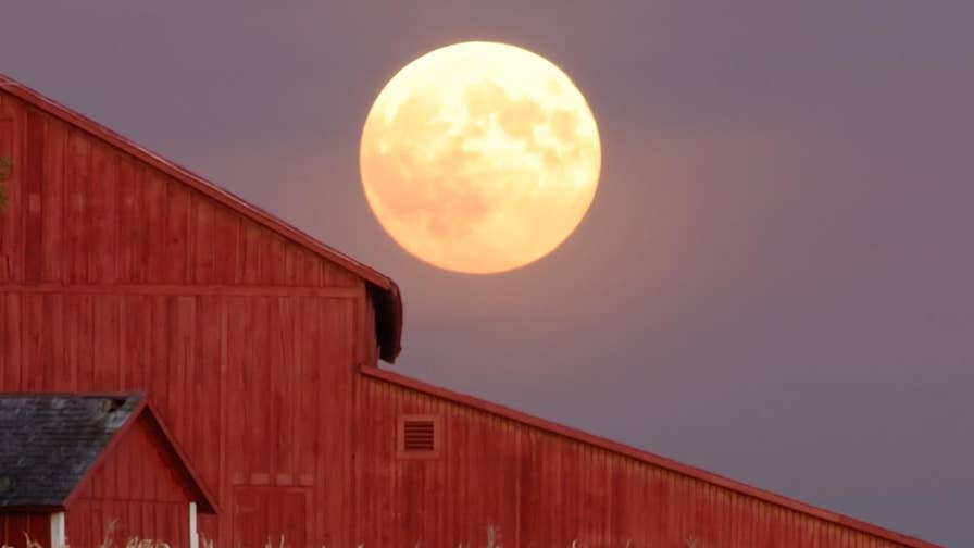 Due to a celestial schedule quirk, October's full moon is also known as the 'Harvest Moon,' an event that only takes place every few years. But why is the 'Harvest Moon' so important?