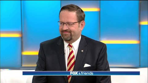 Gorka to GOP establishment: 'Get on board or get out of the way'
