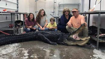What looked to be a third day of unsuccessful gator hunting for Deborah Swails and her family quickly changed.