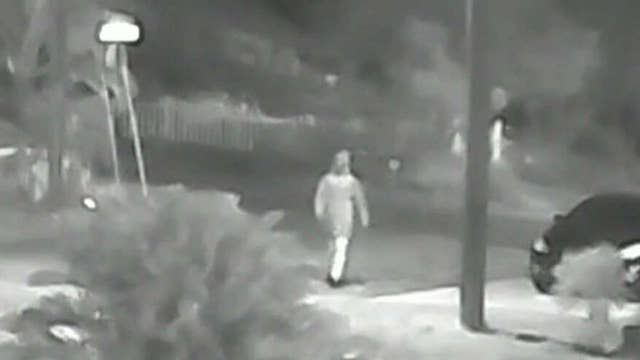Tampa police search for suspect in three murders