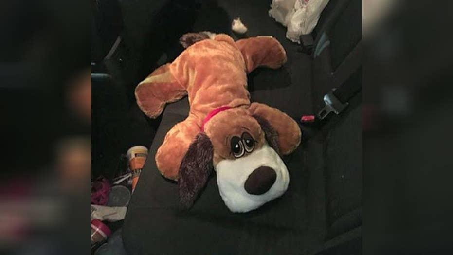 Border Patrol dog sniffs out drugs inside toy