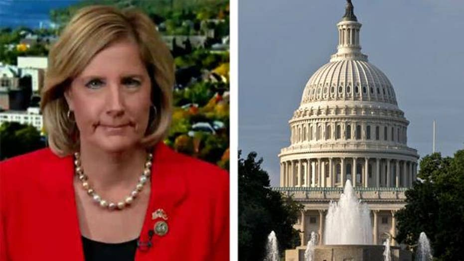 GOP congresswoman on why she voted against House budget